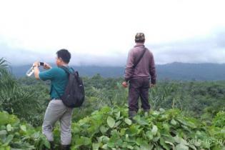 hasil-riset-iucn-kelapa-sawit-9-kali-lebih-efisien-dalam-penggunaan-lahan