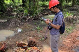 data-mining-dan-big-data-analysis-di-perkebunan-kelapa-sawit