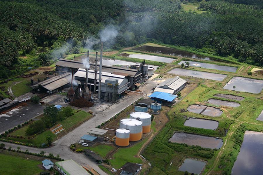 e-Komoditi Indonesia Implementasikan IoT dan AI di Pabrik Kelapa Sawit